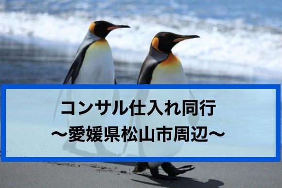 せどり 仕入 同行《愛媛県でコン...
